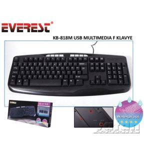 EVEREST KB-818M  MULTIMEDIA F KLAVYE  USB